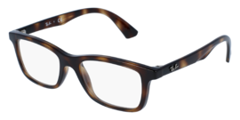 RAY-BAN JUNIOR 1562